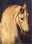 Piotr Michalowski Studium of Horse Head oil painting picture wholesale