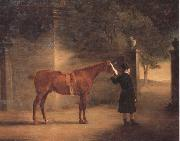 John Ferneley Mr Wombell's Hunter with a Groom in a Courtyard china oil painting reproduction