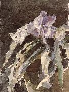 Mikhail Vrubel Orchid china oil painting reproduction