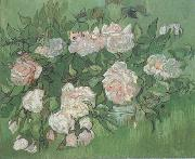 Vincent Van Gogh Still life:Pink Roses (nn04) china oil painting reproduction