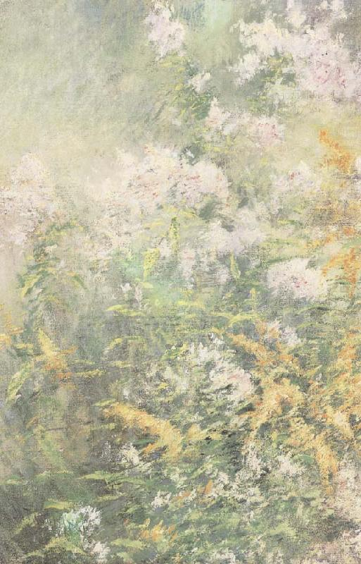 Meadow Flowers, John Henry Twachtman