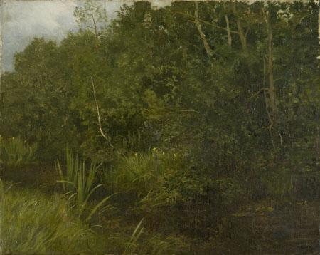 Landscape with a pond, unknow artist